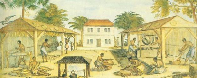 Schiavi lavorano il tabacco - XVII secolo - Virginia (fonte Wikipedia)